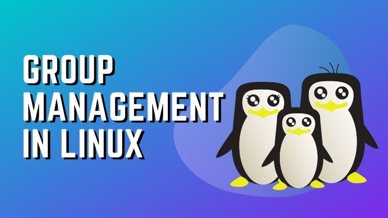 Group Management Linux