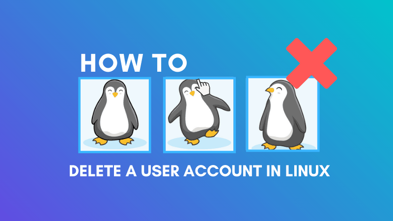 Delete User Account In Linux