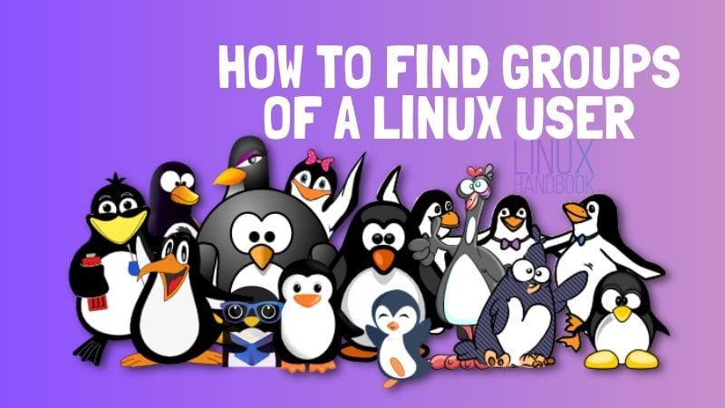 How To Find Group Of A Linux User
