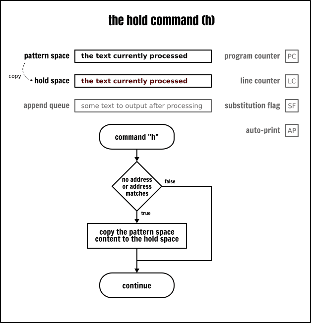 The Sed `hold` command