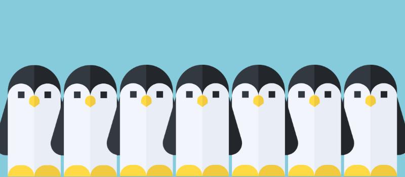 Linux Handbook members